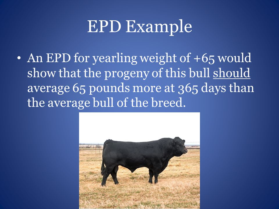 EPD Example