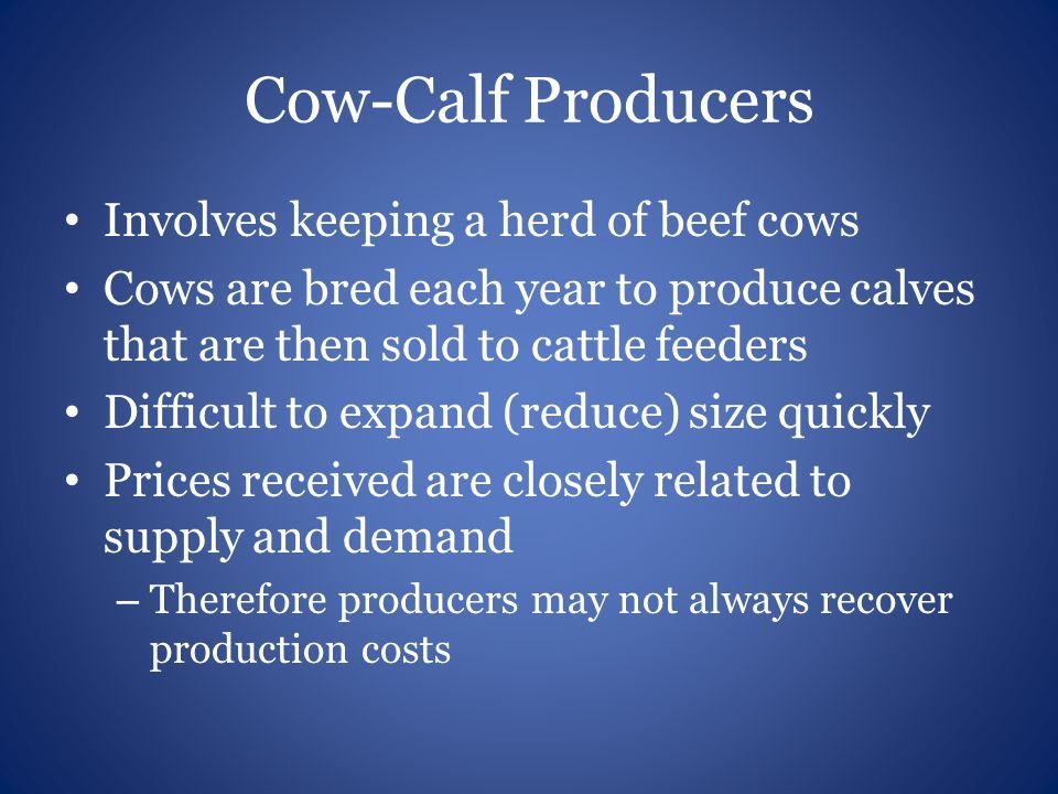 Cow-Calf Producers Involves keeping a herd of beef cows