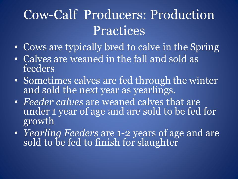 Cow-Calf Producers: Production Practices