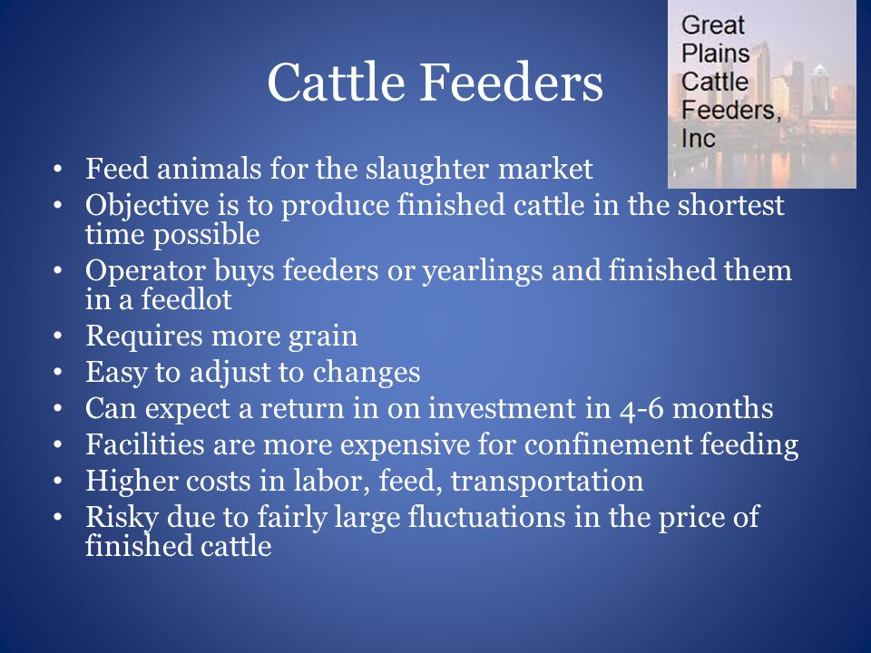 Cattle Feeders Feed animals for the slaughter market