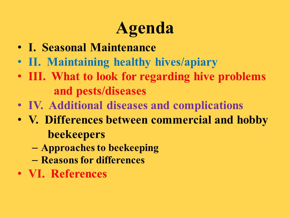 Agenda I. Seasonal Maintenance II. Maintaining healthy hives/apiary