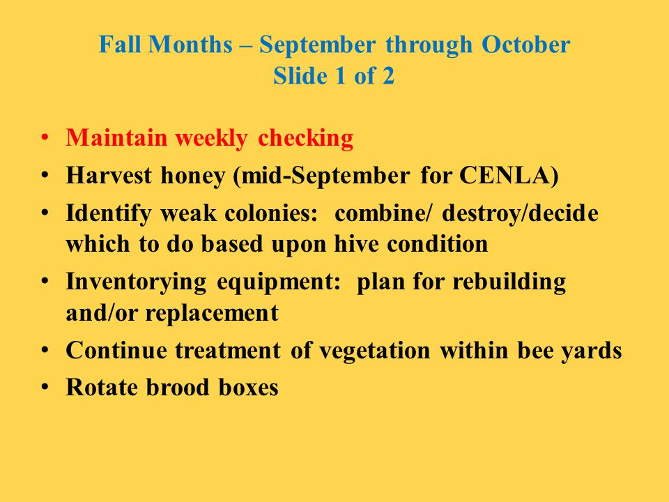 Fall Months – September through October Slide 1 of 2
