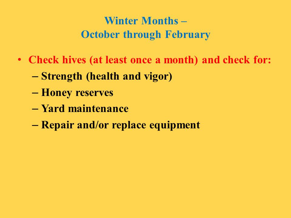Winter Months – October through February