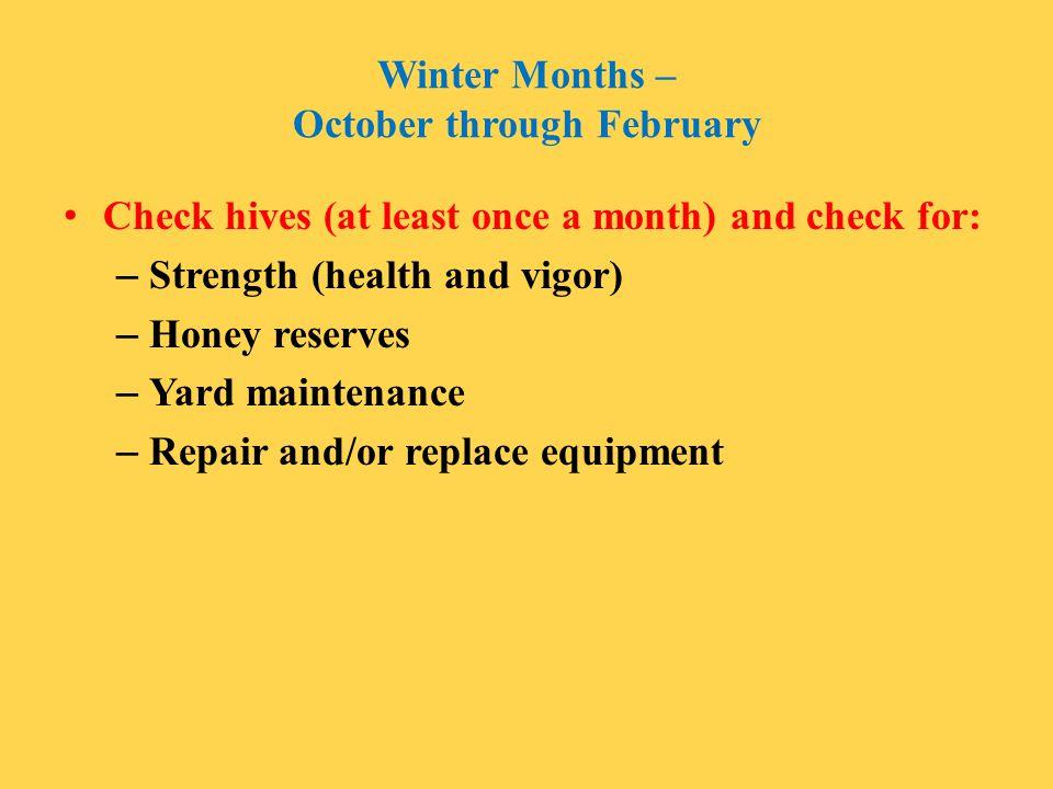 Winter Months – October through February