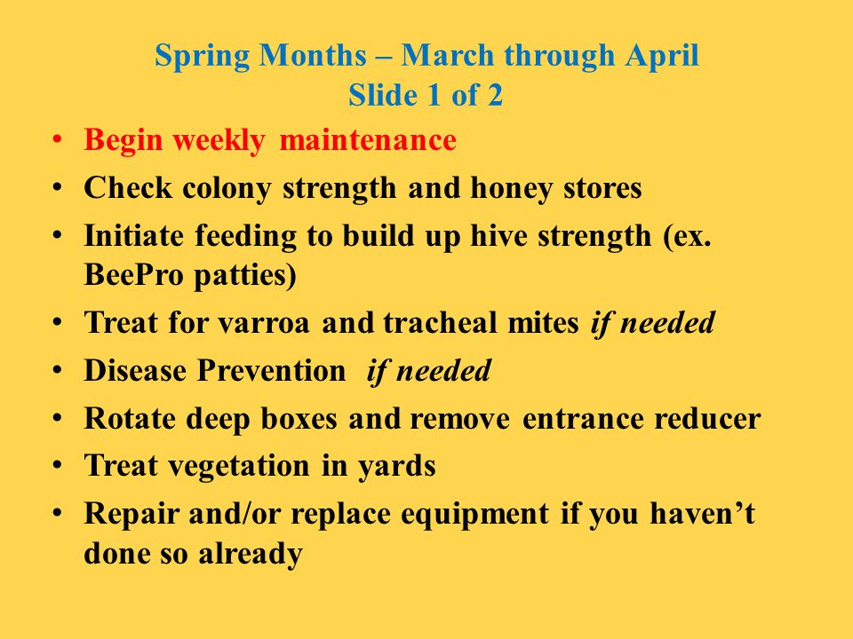 Spring Months – March through April Slide 1 of 2