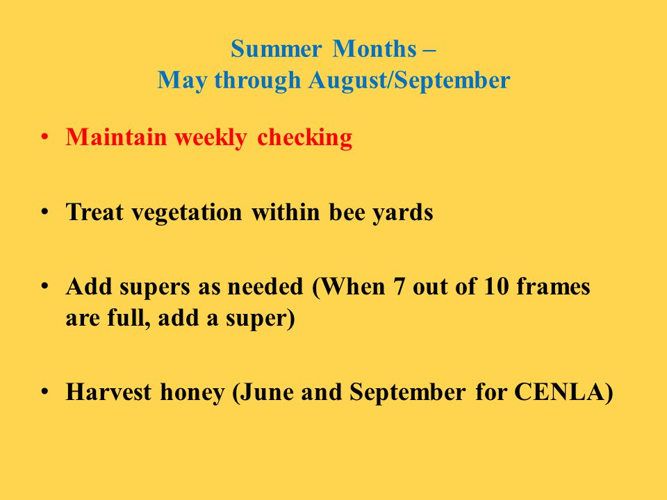 Summer Months – May through August/September