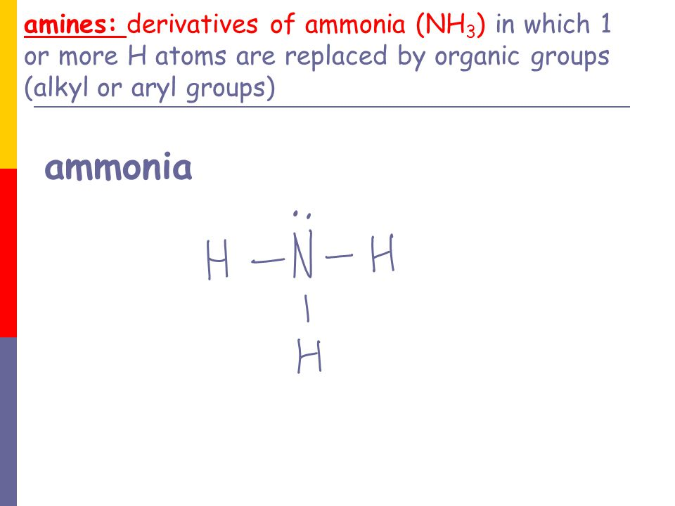 amines: derivatives of ammonia (NH3) in which 1 or more H atoms are replaced by organic groups (alkyl or aryl groups) ammonia