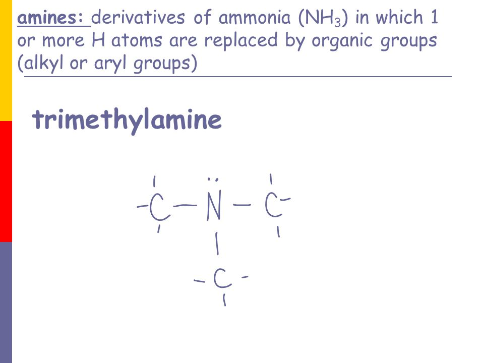 amines: derivatives of ammonia (NH3) in which 1 or more H atoms are replaced by organic groups (alkyl or aryl groups) trimethylamine