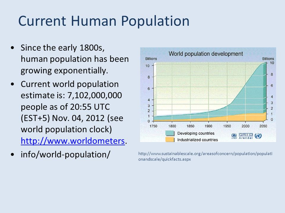 Current Human Population
