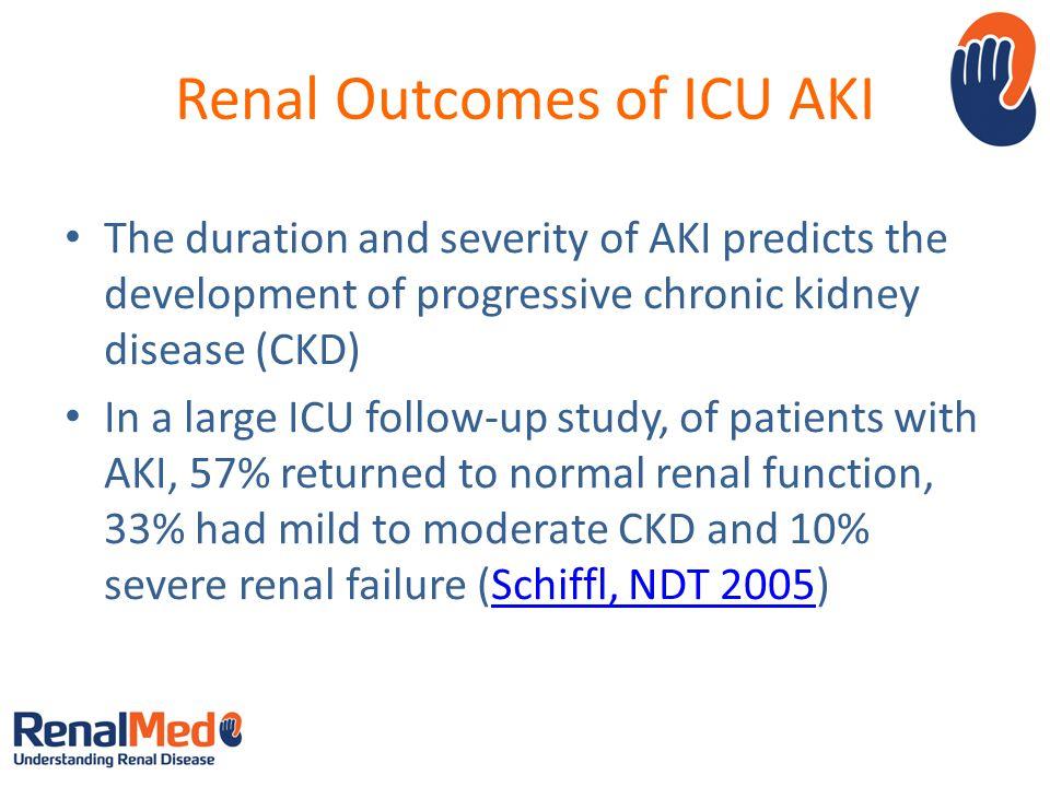 Renal Outcomes of ICU AKI