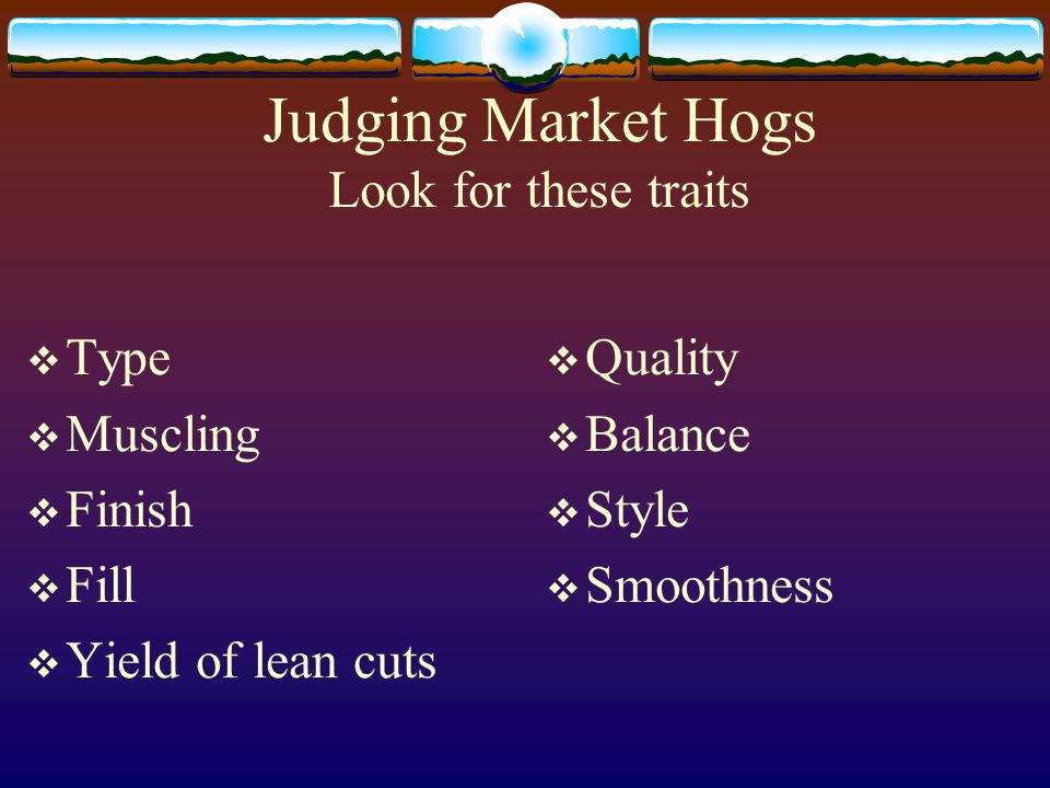 Judging Market Hogs Look for these traits