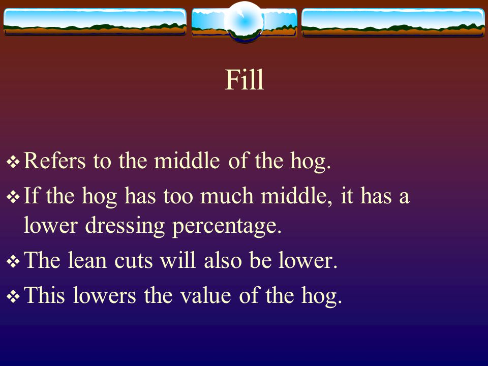Fill Refers to the middle of the hog.