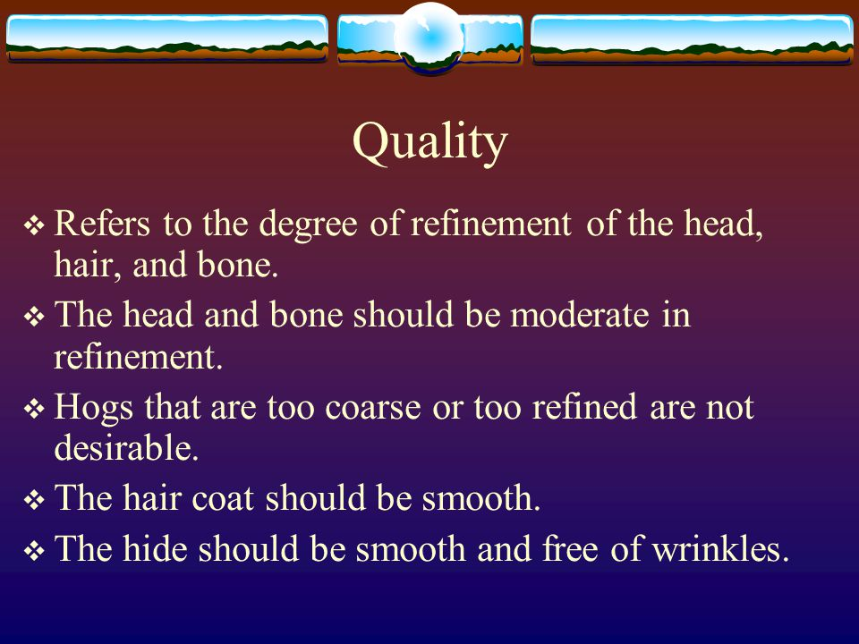 Quality Refers to the degree of refinement of the head, hair, and bone. The head and bone should be moderate in refinement.
