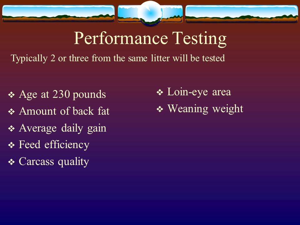 Performance Testing Loin-eye area Age at 230 pounds Weaning weight