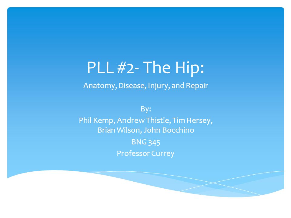 PLL #2- The Hip: Anatomy, Disease, Injury, and Repair By: