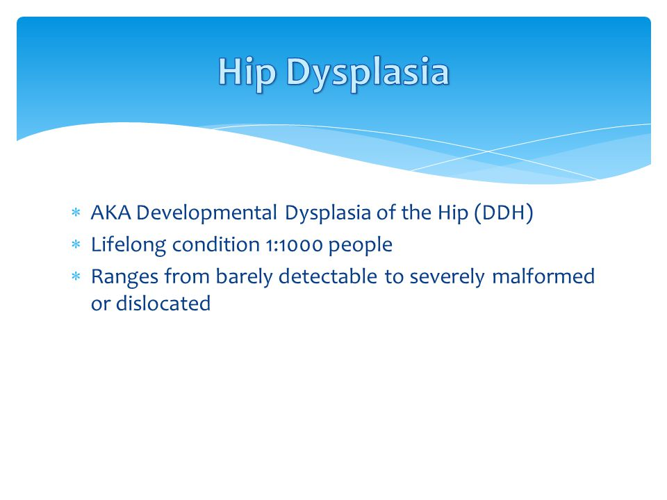 Hip Dysplasia AKA Developmental Dysplasia of the Hip (DDH)