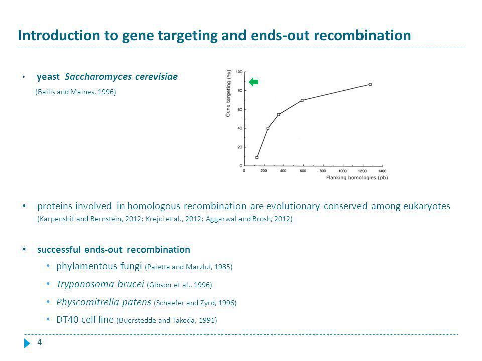 Introduction to gene targeting and ends-out recombination