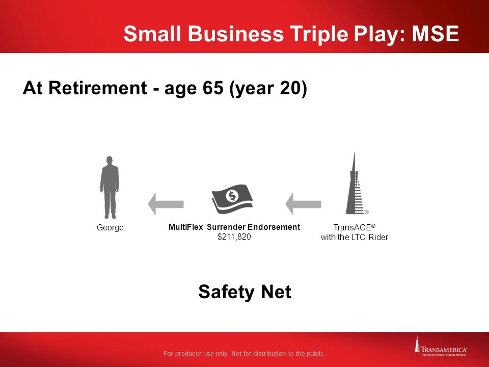 Small Business Triple Play: MSE