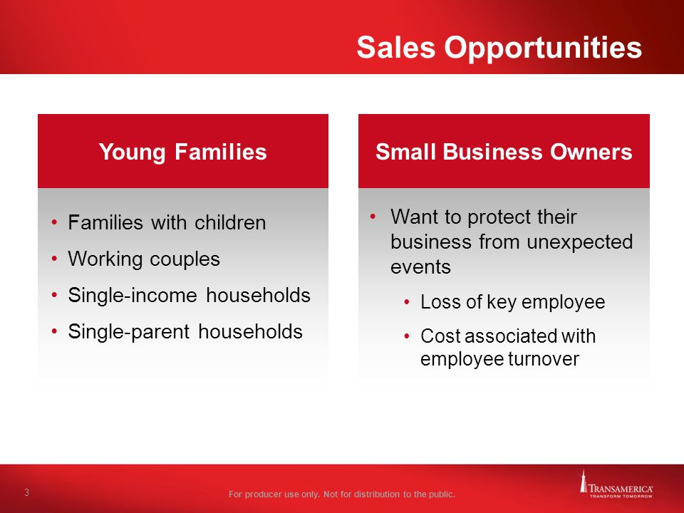 Sales Opportunities Young Families Small Business Owners
