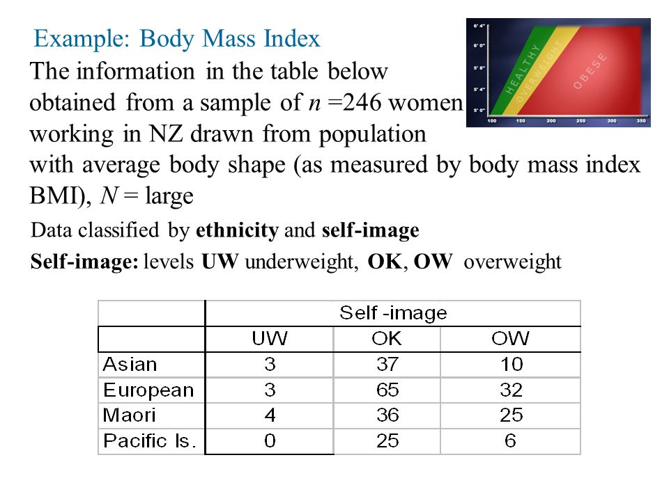 Example: Body Mass Index The information in the table below