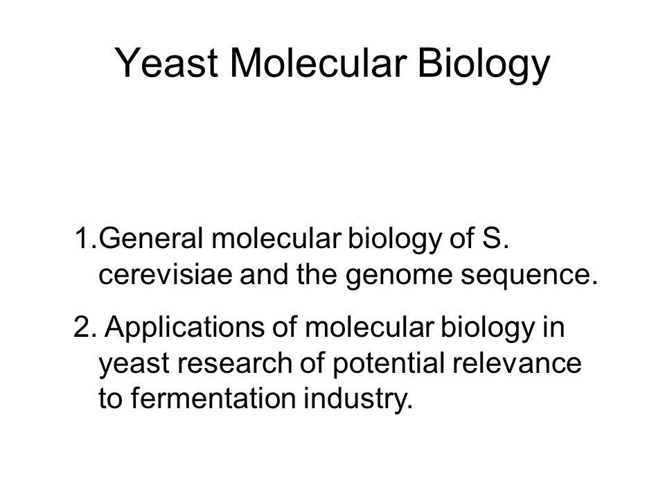 Yeast Molecular Biology