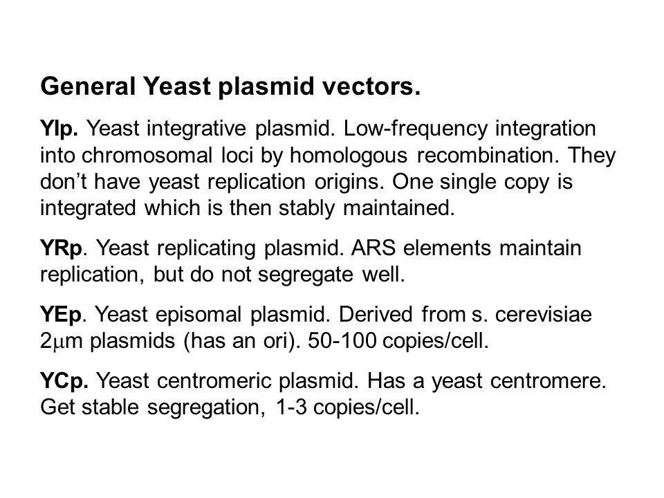 General Yeast plasmid vectors.