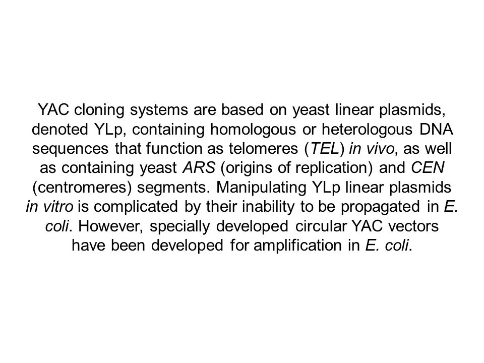 YAC cloning systems are based on yeast linear plasmids, denoted YLp, containing homologous or heterologous DNA sequences that function as telomeres (TEL) in vivo, as well as containing yeast ARS (origins of replication) and CEN (centromeres) segments.