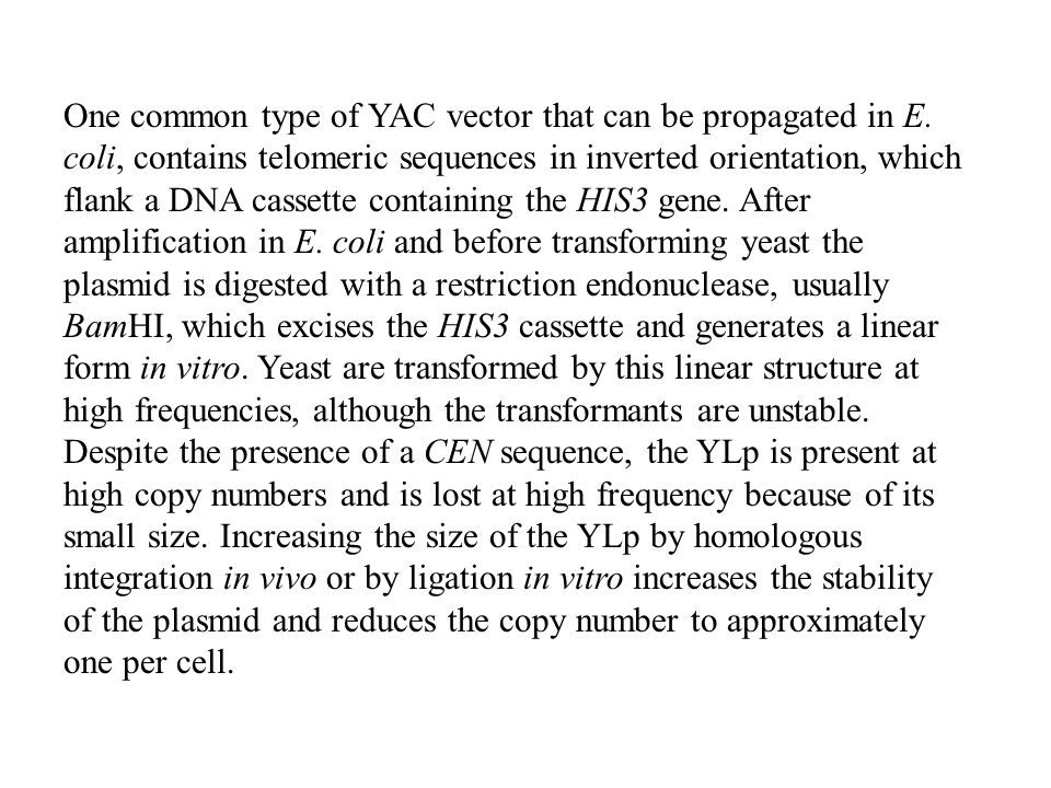 One common type of YAC vector that can be propagated in E