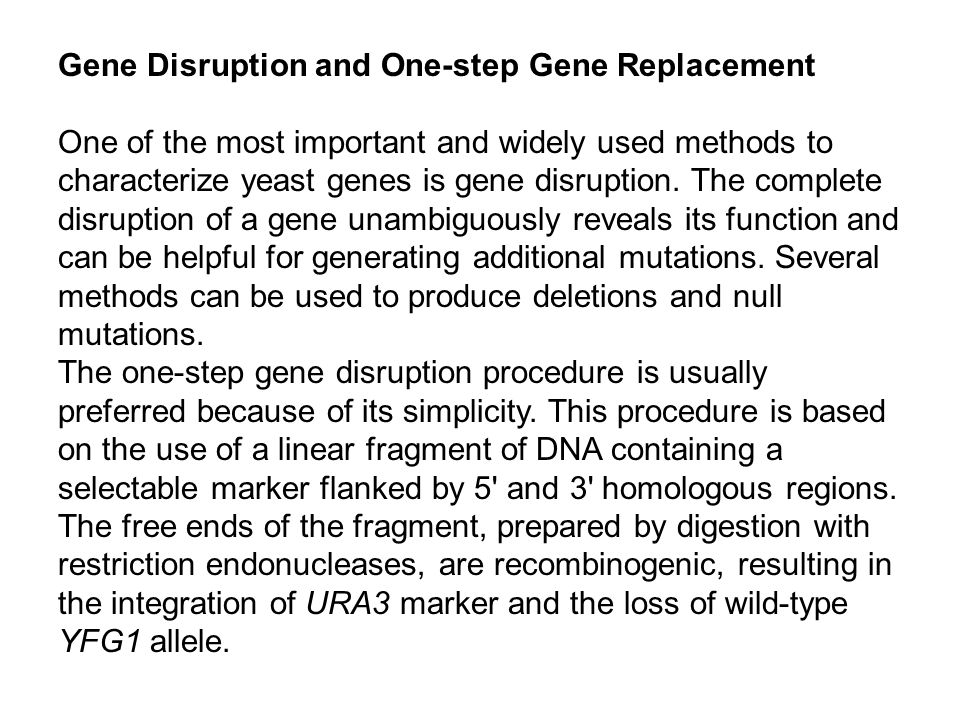 Gene Disruption and One-step Gene Replacement
