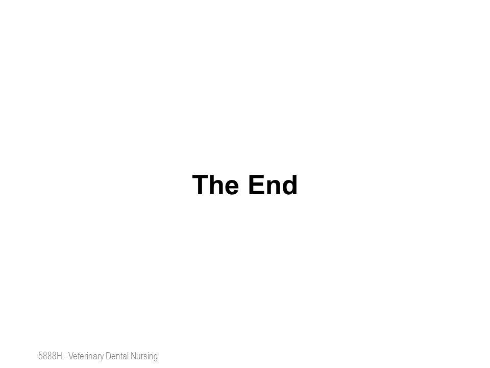 The End 5888H - Veterinary Dental Nursing