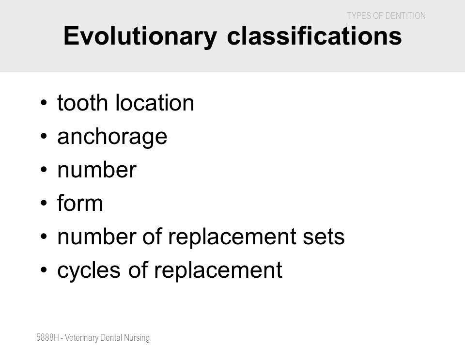 Evolutionary classifications