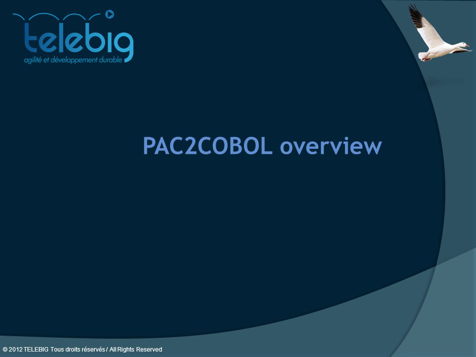 PAC2COBOL overview 16