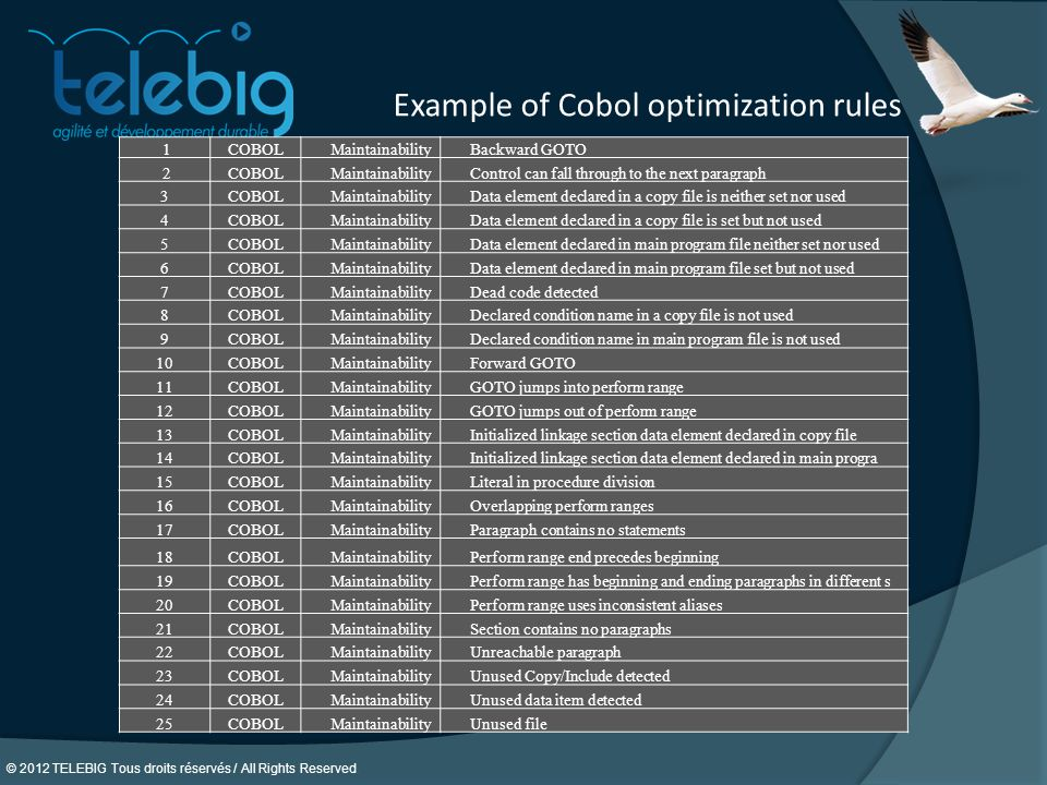 Example of Cobol optimization rules