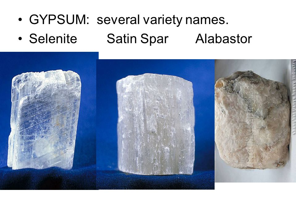 GYPSUM: several variety names.