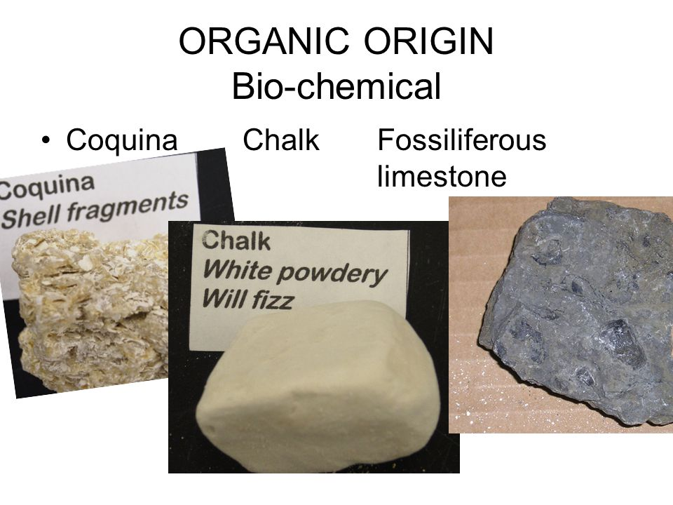 ORGANIC ORIGIN Bio-chemical
