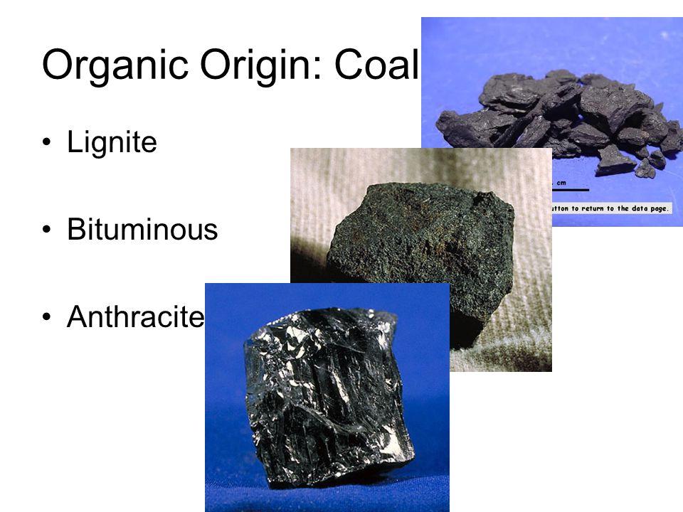 Organic Origin: Coal Lignite Bituminous Anthracite