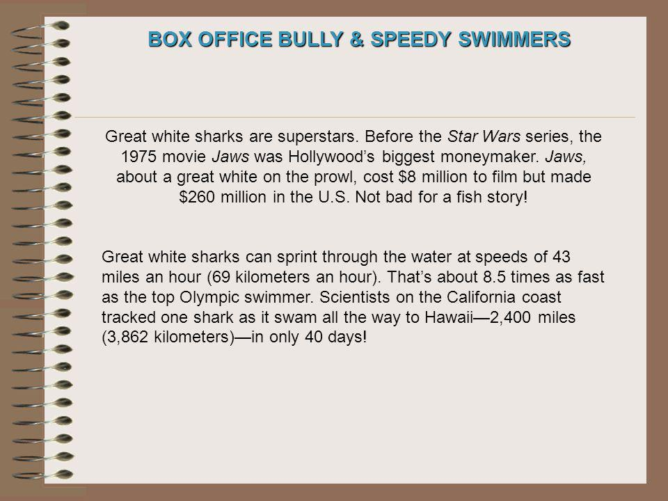 BOX OFFICE BULLY & SPEEDY SWIMMERS