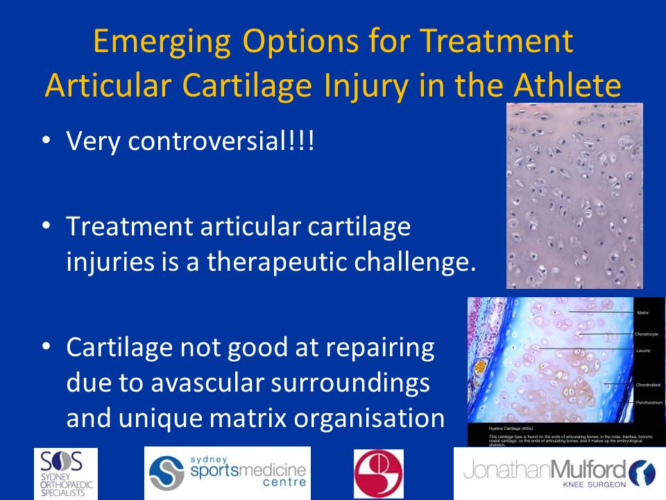 Emerging Options for Treatment Articular Cartilage Injury in the Athlete