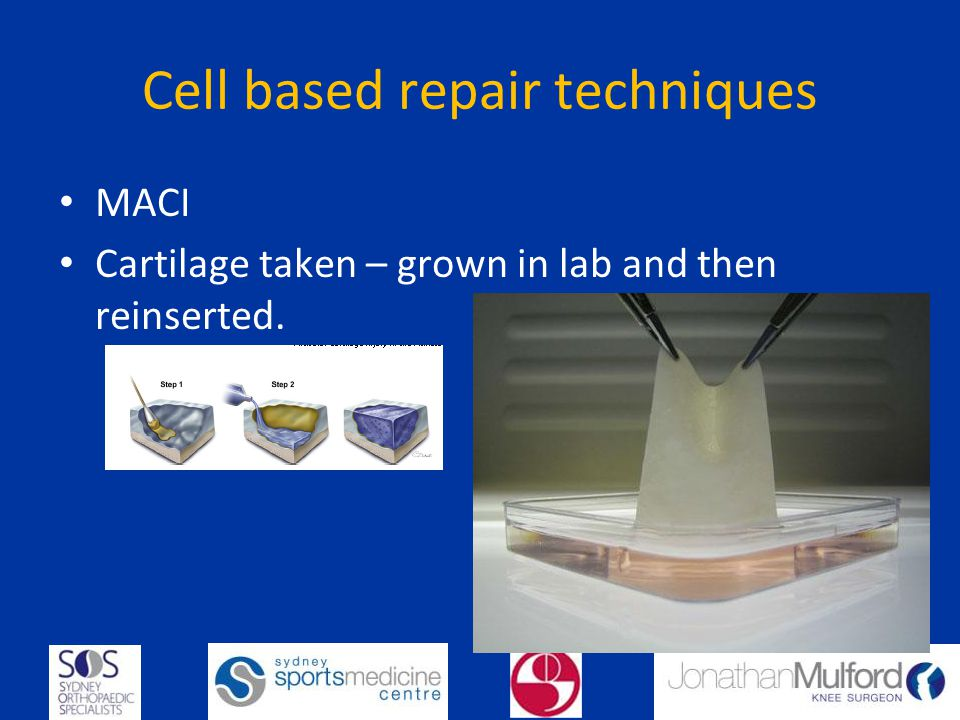 Cell based repair techniques