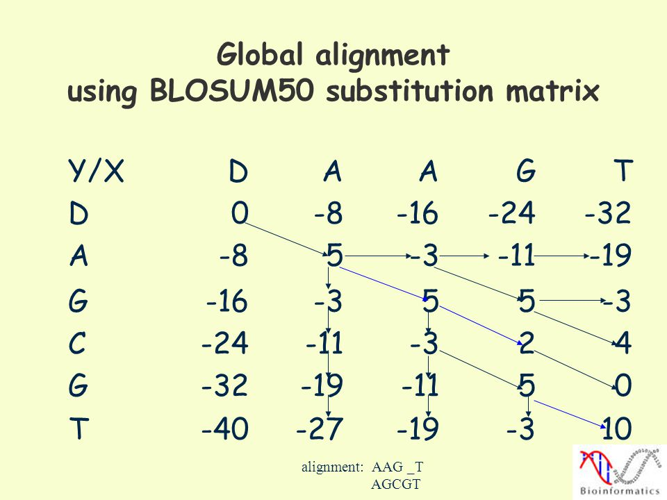 Global alignment using BLOSUM50 substitution matrix
