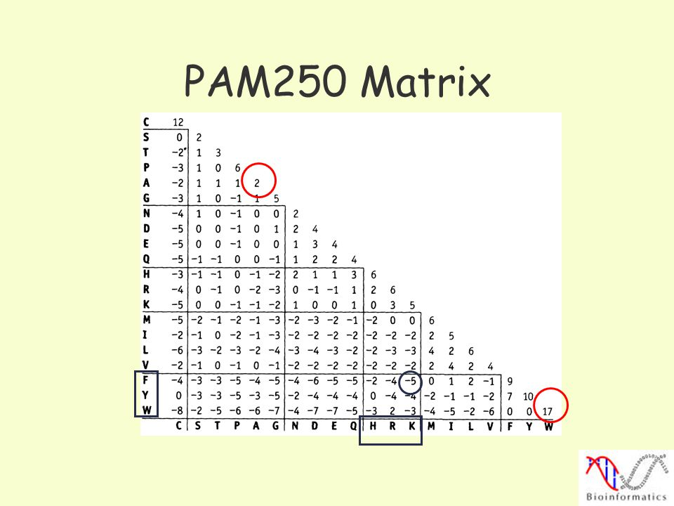 PAM250 Matrix