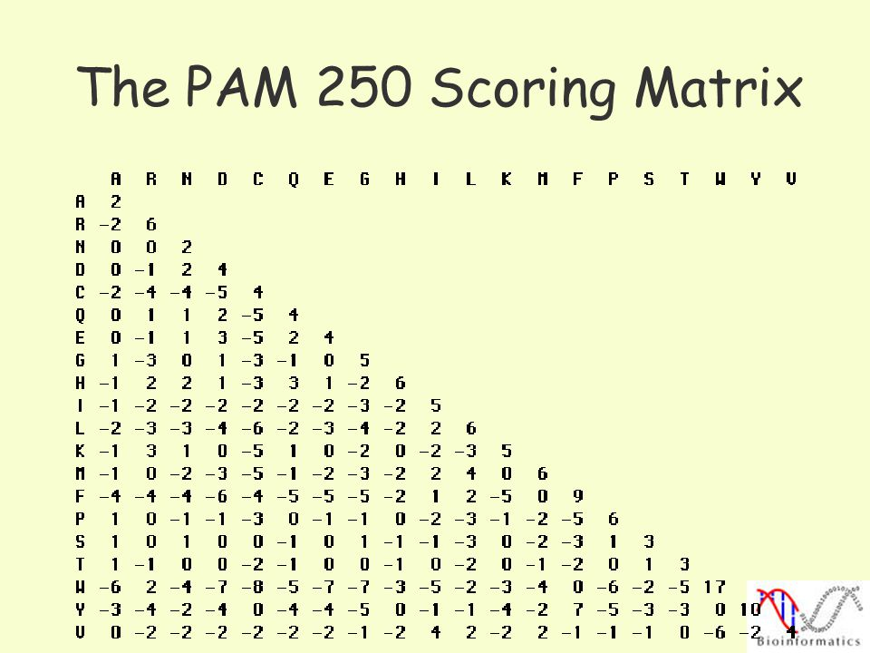 The PAM 250 Scoring Matrix