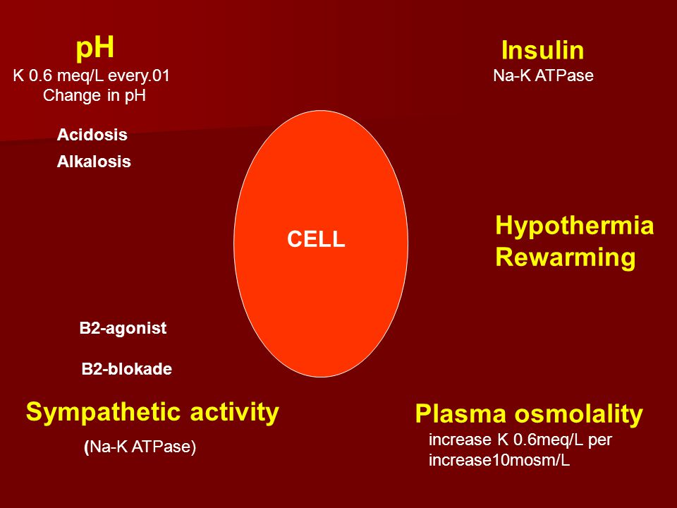 pH Insulin Hypothermia Rewarming Sympathetic activity