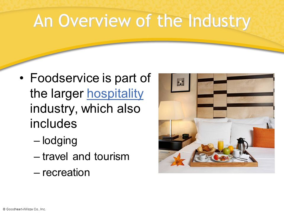 An Overview of the Industry