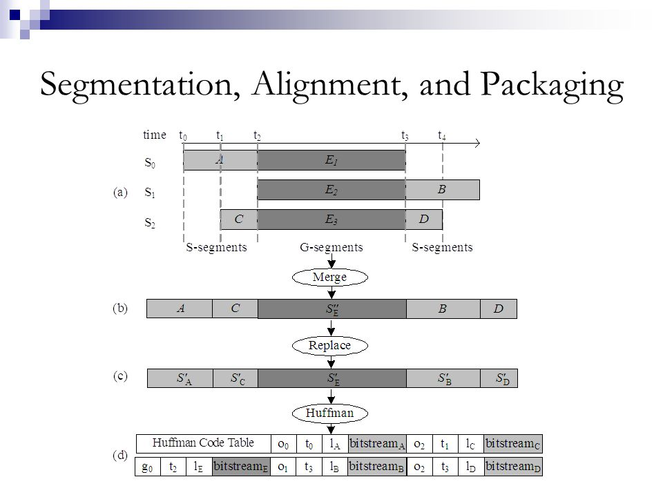 Segmentation, Alignment, and Packaging