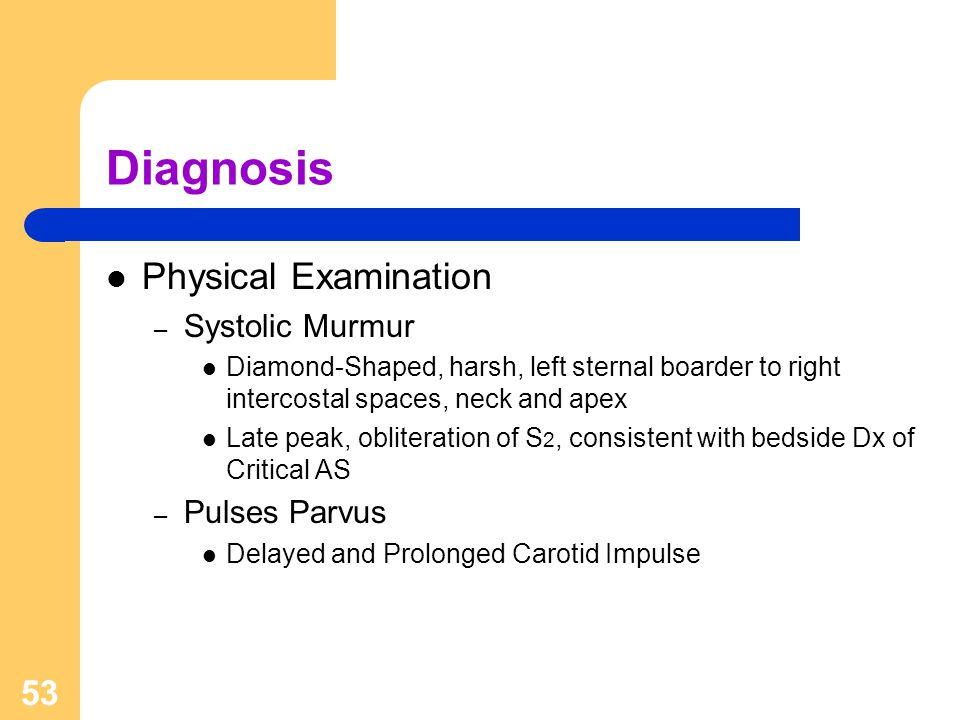 Diagnosis Physical Examination Systolic Murmur Pulses Parvus