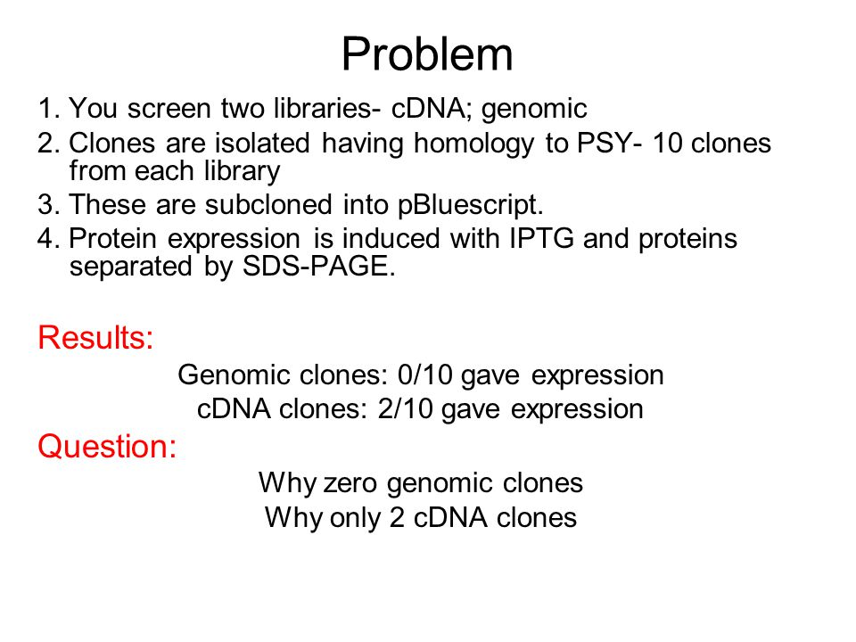 Problem Results: Question: 1. You screen two libraries- cDNA; genomic
