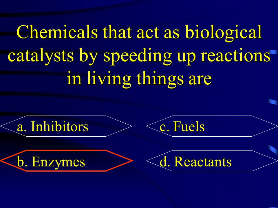 Chemicals that act as biological catalysts by speeding up reactions in living things are