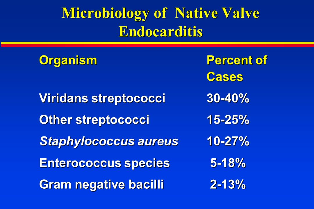 Microbiology of Native Valve Endocarditis