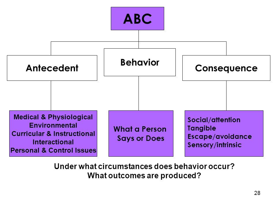 ABC ABC Behavior Antecedent Consequence What a Person Says or Does